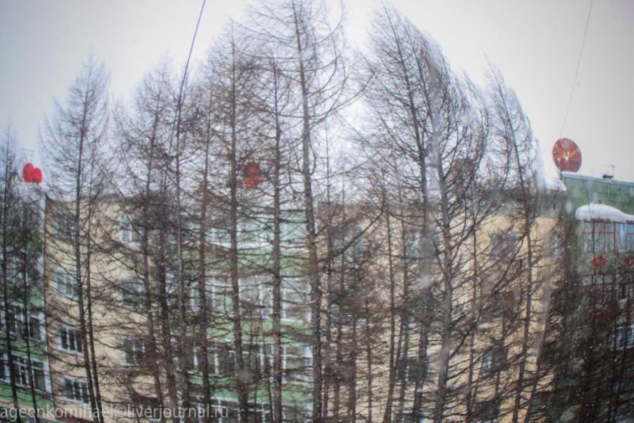 Сильный ветер (1 фото)