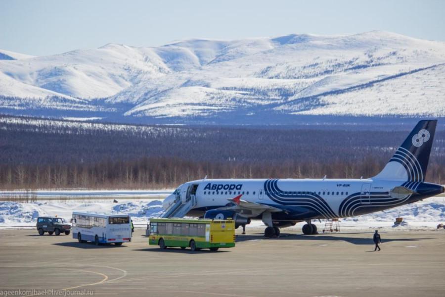 Airbas A319 авиакомпании Аврора (2 фото)