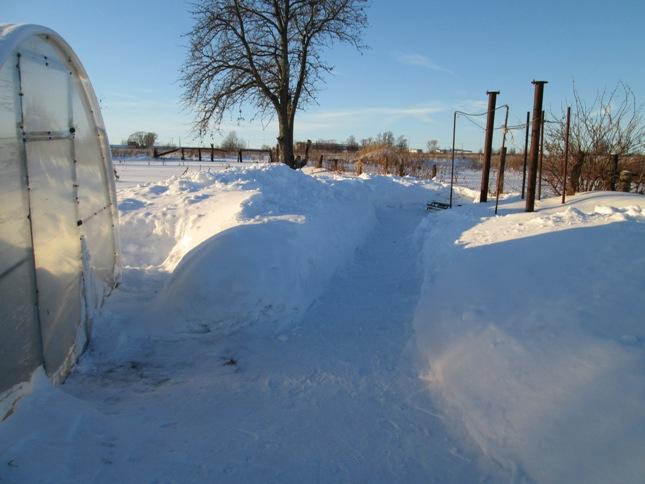 snegouborka-180117_25.JPG