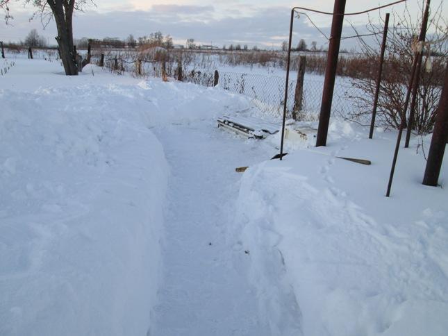 snegouborka-180117_26.JPG