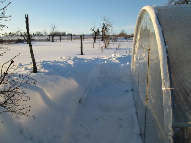 snegouborka-180117_27.JPG
