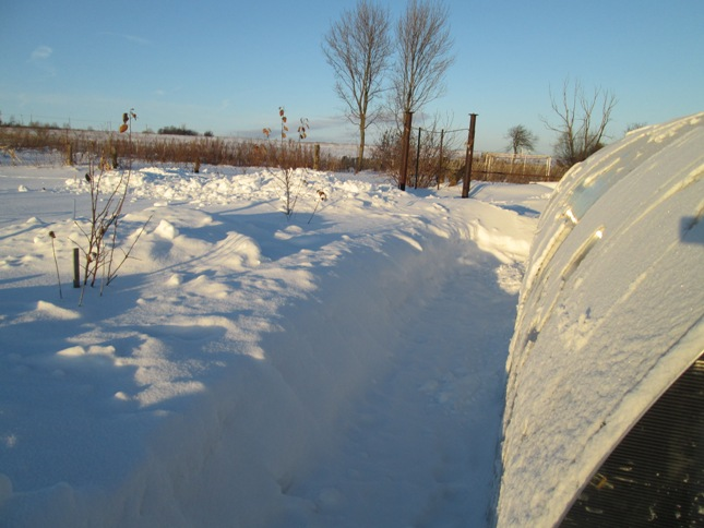 snegouborka-180117_28.JPG