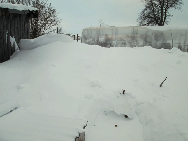 snegouborka-200117_01.JPG