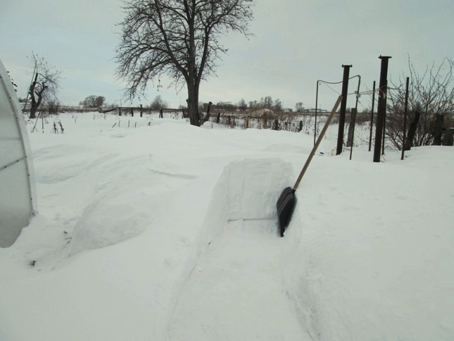 snegouborka-200117_02.JPG