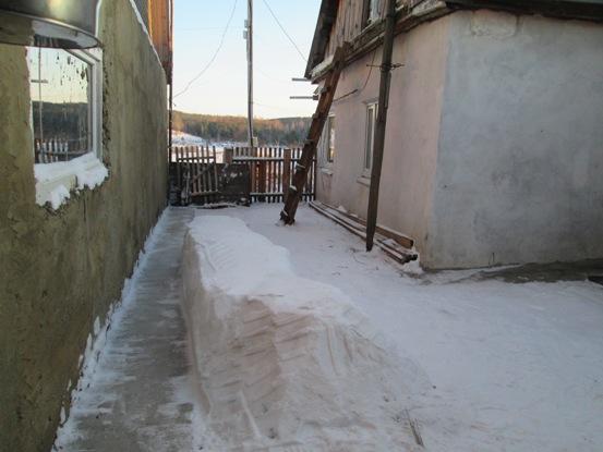sneg-drova_170114_01.JPG