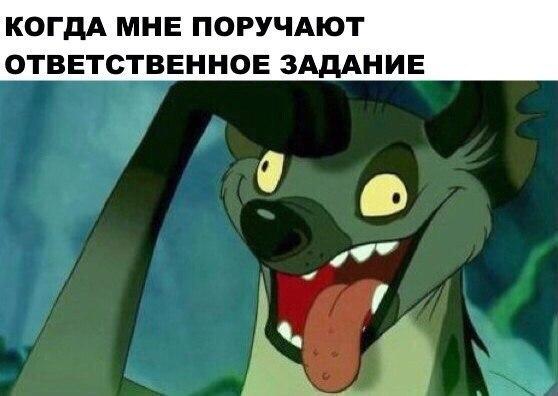 uEtojqCgSk0