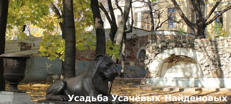 usachevy800