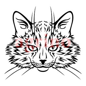 cat_muzzle