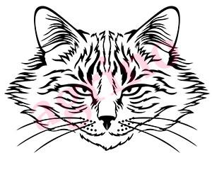 harmful_cat