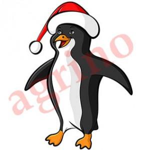 penguin_cap_color