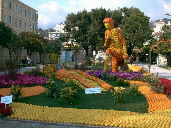 Фестиваль цитрусов