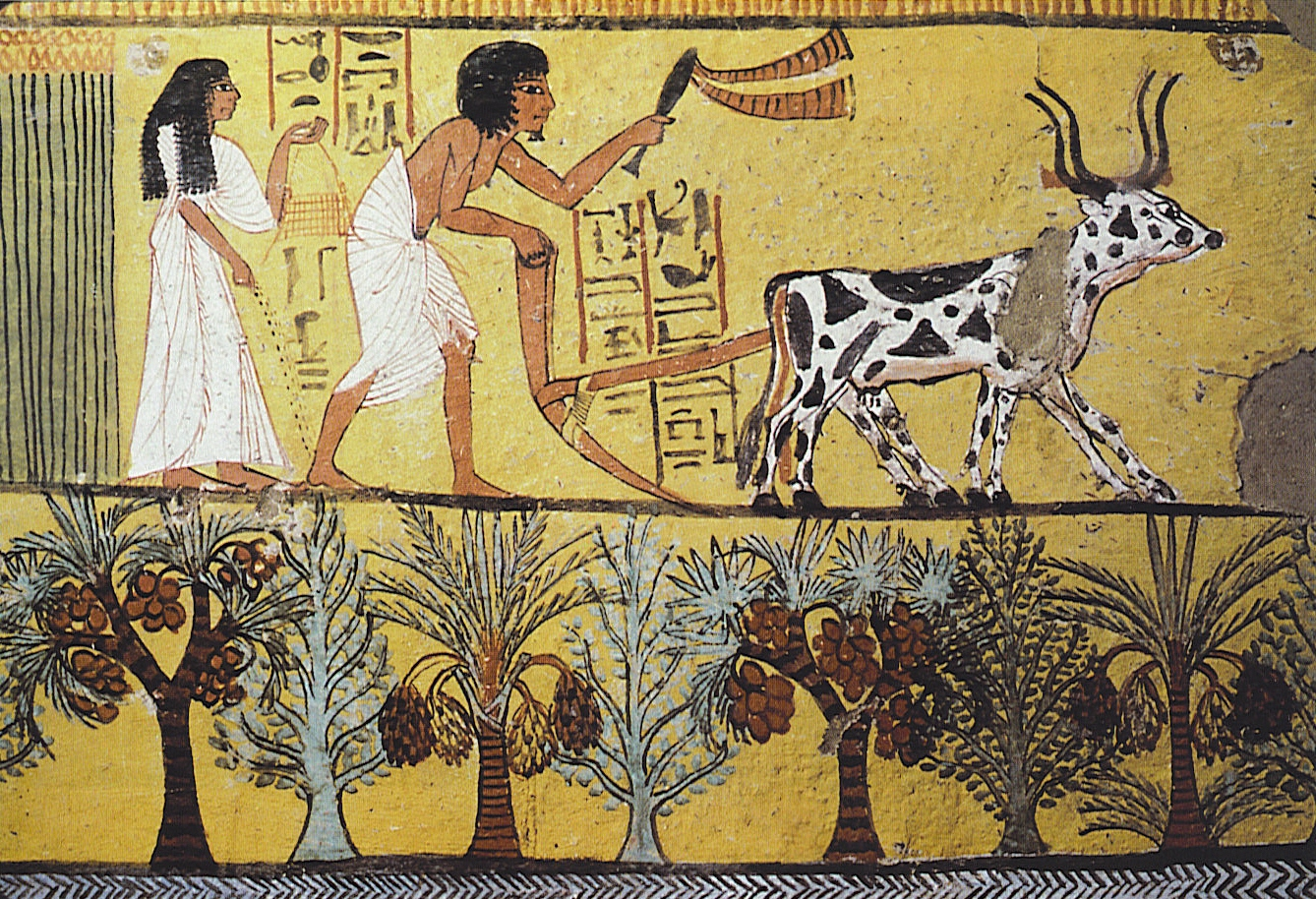 the life of peasants in ancient egypt Peasant life in ancient egypt keyword after analyzing the system lists the list of keywords related and the list of websites with related content, in addition you can see which keywords most interested customers on the this website.