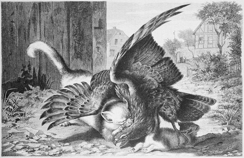 Гравюра неизвестного автора 18 век