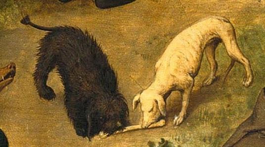 38. Собаки грызутся за кость