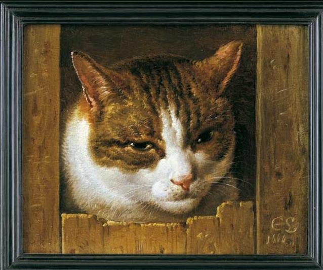Обманка с котом.