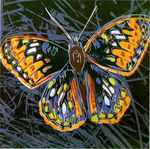 Warhol-Butterfly