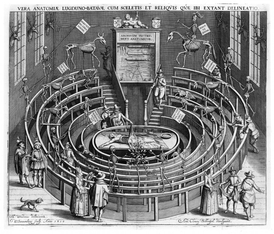 9 Лейденская Anatomical_theatre_Leiden