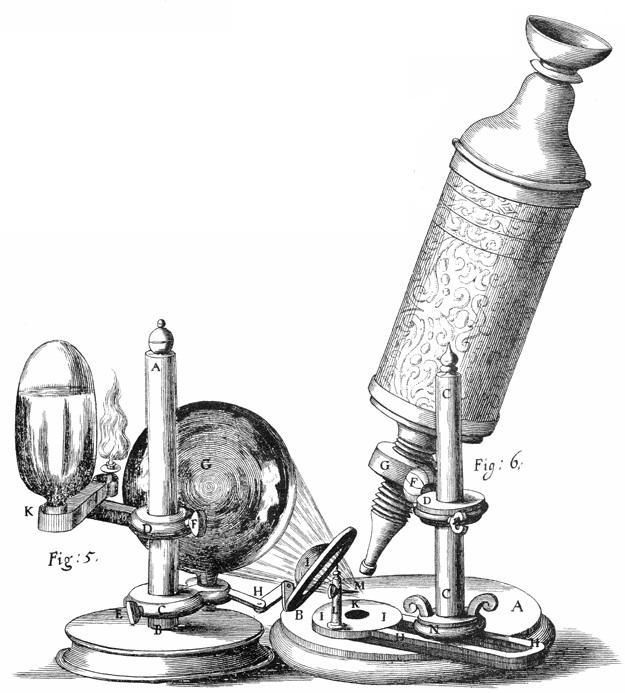 10 микроскоп Леевенгука