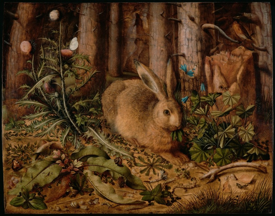 1 Hans_Hoffmann_(German_-_A_Hare_in_the_Forest_-_Google_Art_Project
