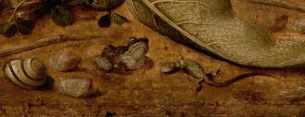 1 жабы ящерицы