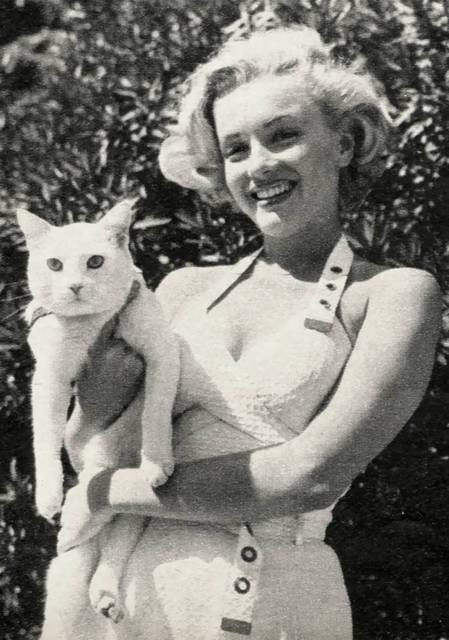 marylin-monroe-and-cat