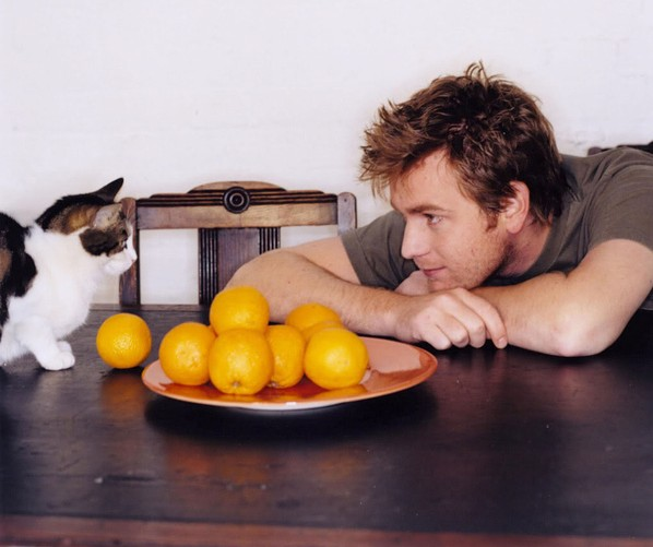 Celebrities-With-Cats-Ewan-MacGregor-e1333137472910