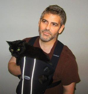 m2_Georges_Clooney