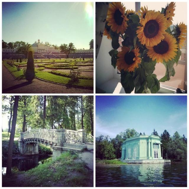 PicMonkey Collage14