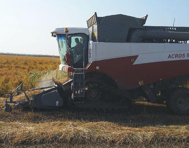 Harvest2014