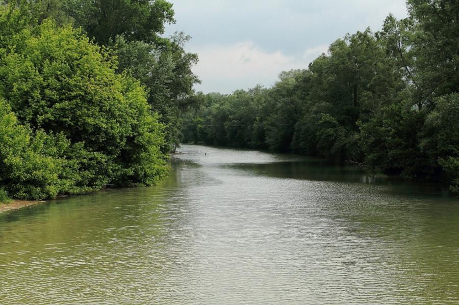 4 IMG_8779mm Приток Дуная в Мелке