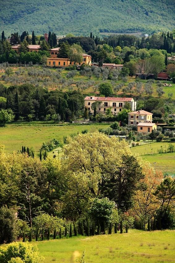 Ареццо Просто Ареццо 1806693 900