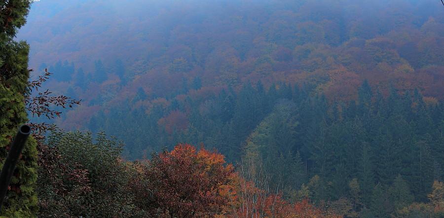 12 Утрений туман. DPP_96821087