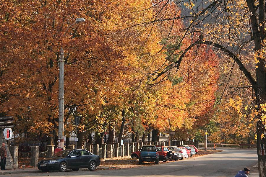 30 Осень в городе.DPP_96821120