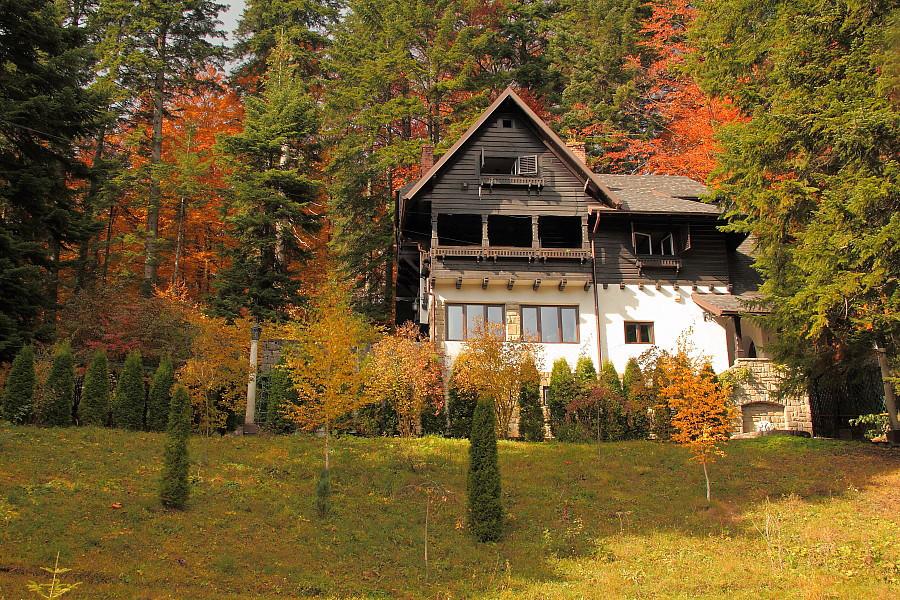55 Домик в лесу.DPP_96821193