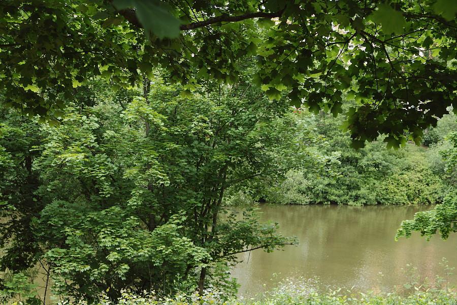 2  У реки DPP_96821060