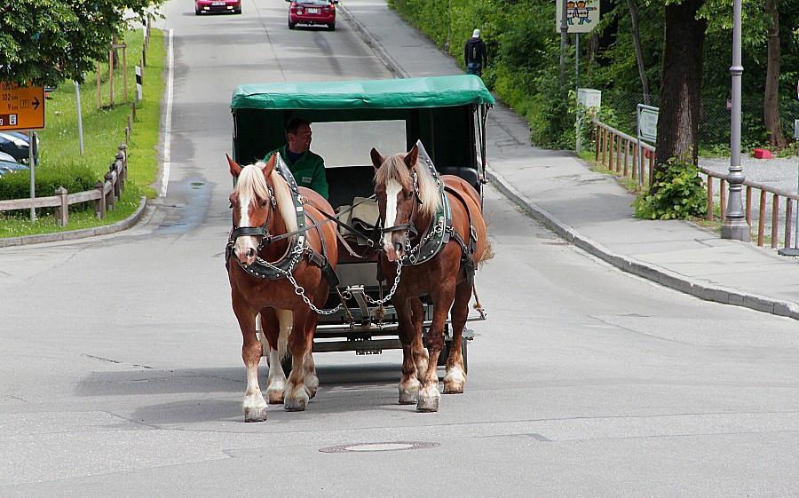 5 Подвозка к замкам в Швангау