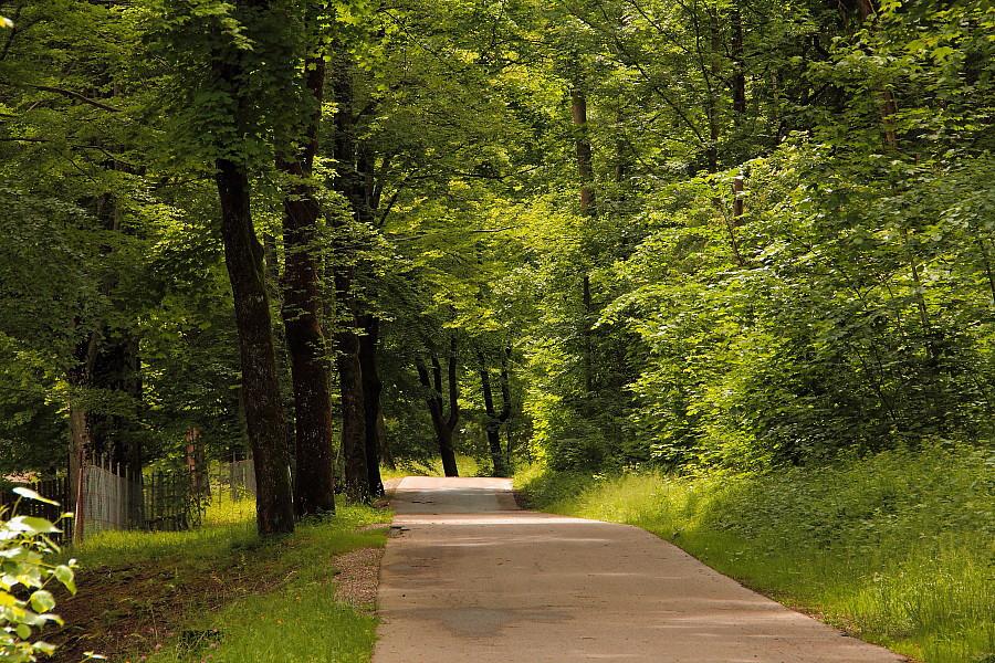 22 Естественный парк в Фюссене