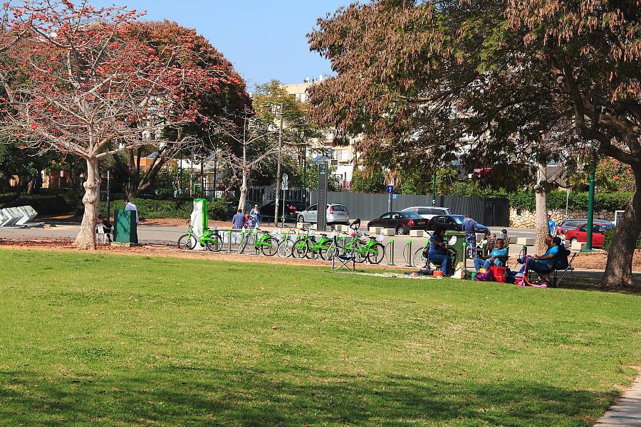 9 Прокат велосипедов в парке