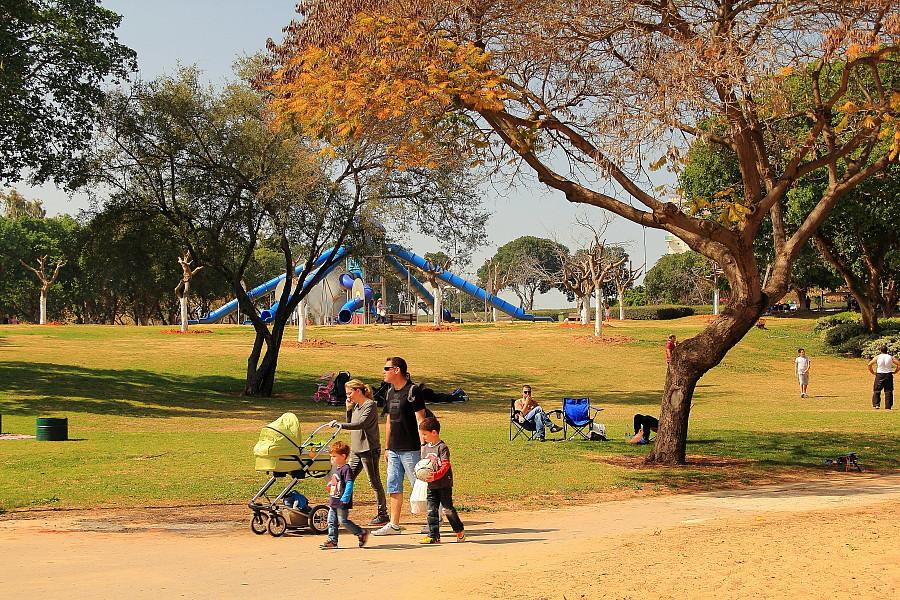 10 Детская площадка в парке