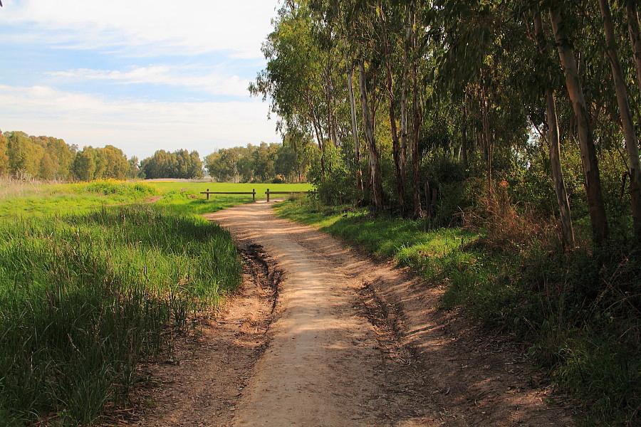 4 Дорога вдоль реки