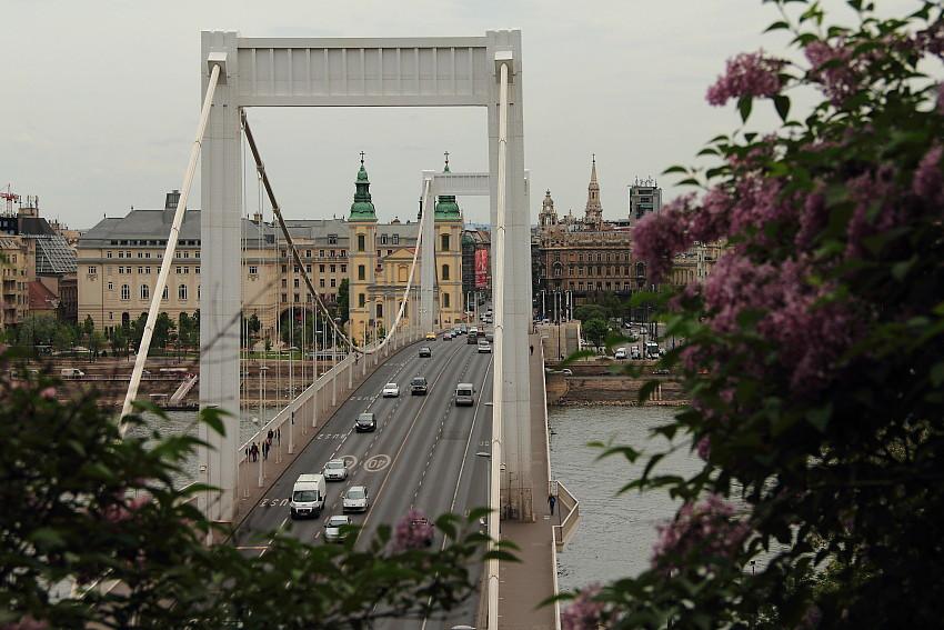27 - DPP_968222 Мост Эржебет.