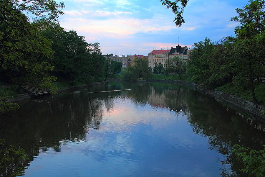 1 IMG_3896m Протока реки Одры