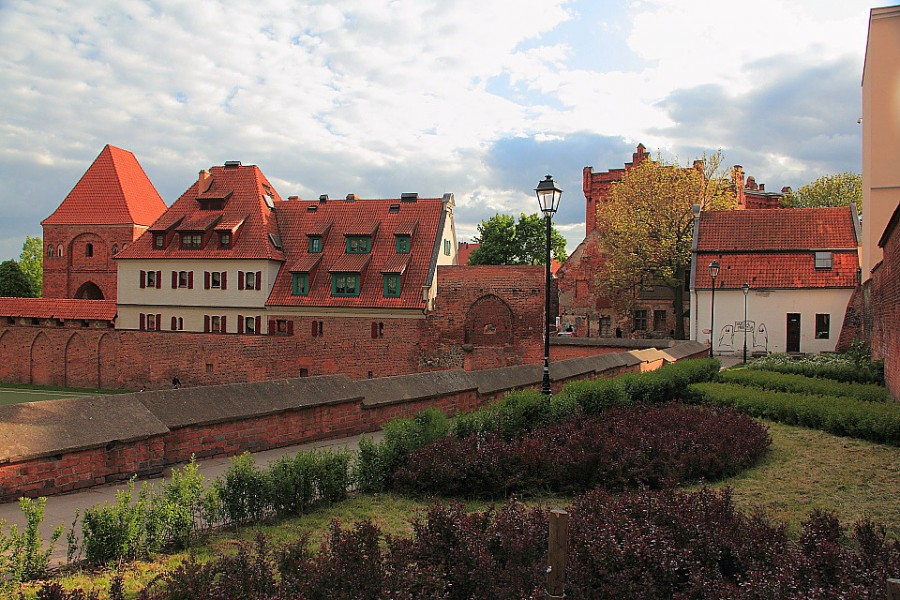 29 IMG_4216m Руины замка тевтонского ордена