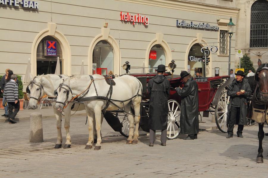 6    Венские извозчики