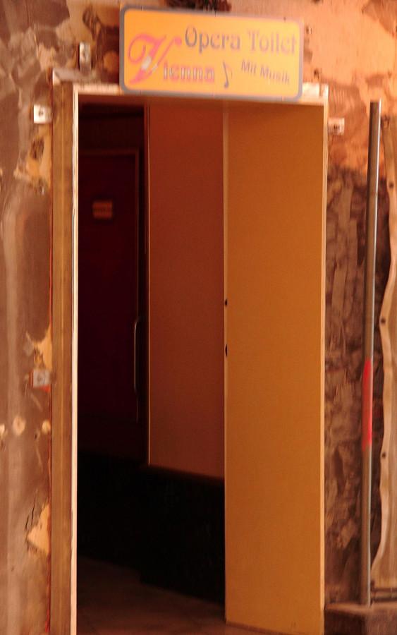 45 IMG_9200mm Музыкальный туалет