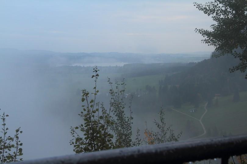 DPP_032 Туман