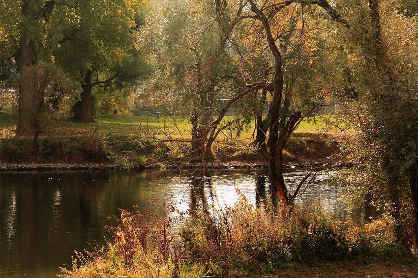 IMG_8169m Протока в парке