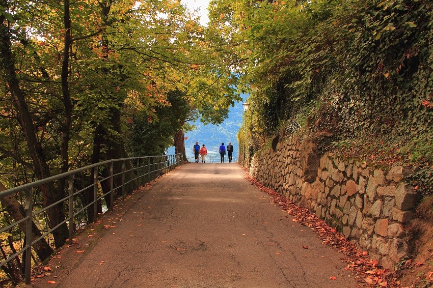 21 Красивейшая дорога в горах IMG_6863m