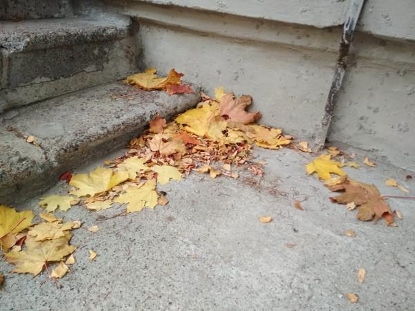 осень у порога