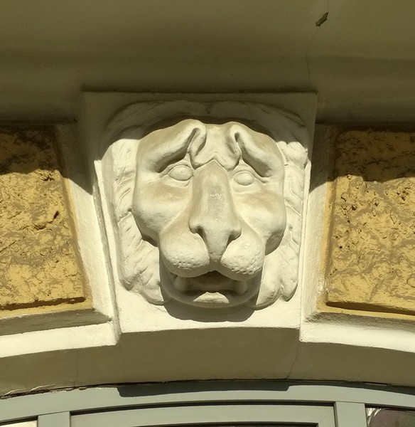 морда льва1